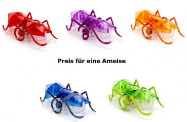 Hexbug Micro Ant Ameise Roboter 1Stk. diverse Farben
